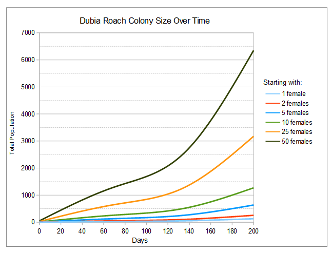New Dubia colony growth chart